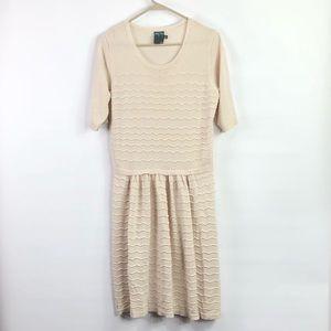 Gabby Sky sweater dress drop waist size Xlarge